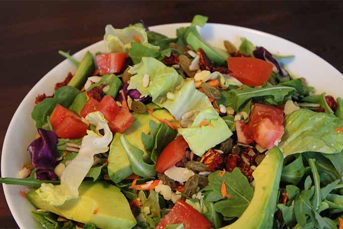 Raw Tossed Salad | Foodal.com