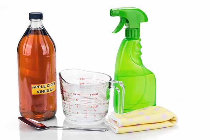 Vinegar Cleaning Solution | Foodal.com