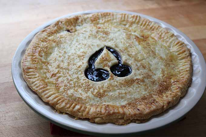 Home-Baked Cherry Pie | Foodal.com