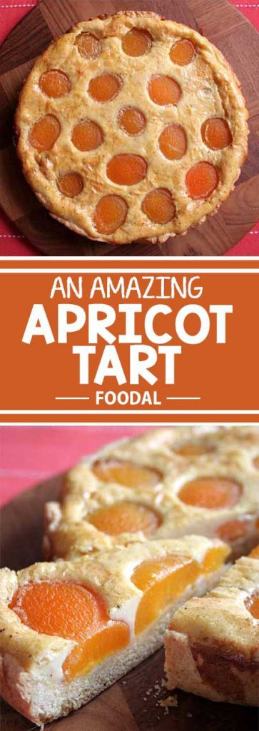 A beautiful, tasty apricot tart from Germany with a butter crust and a vanilla custard filling. It's so simple to make, you just have to try it at home! Read more on Foodal and get the recipe now!
