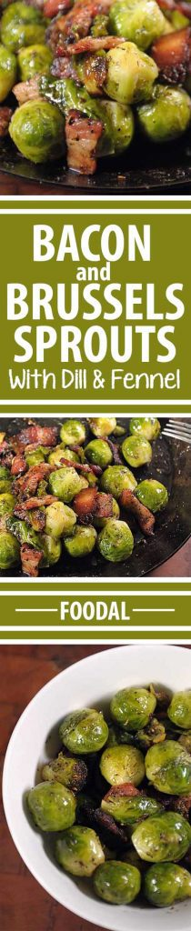 "Have you always thought that Brussels sprouts were ""icky?"" If so, give this recipe a whirl. The added bacon gives it the flavor and texture that makes it very tasty. And the added fats helps your body absorb the nutrients packed into the sprouts. And that is what is called a win-win! Get the recipe here: https://foodal.com/recipes/veggies/organic-brussels-sprouts-sauteed-with-bacon/"