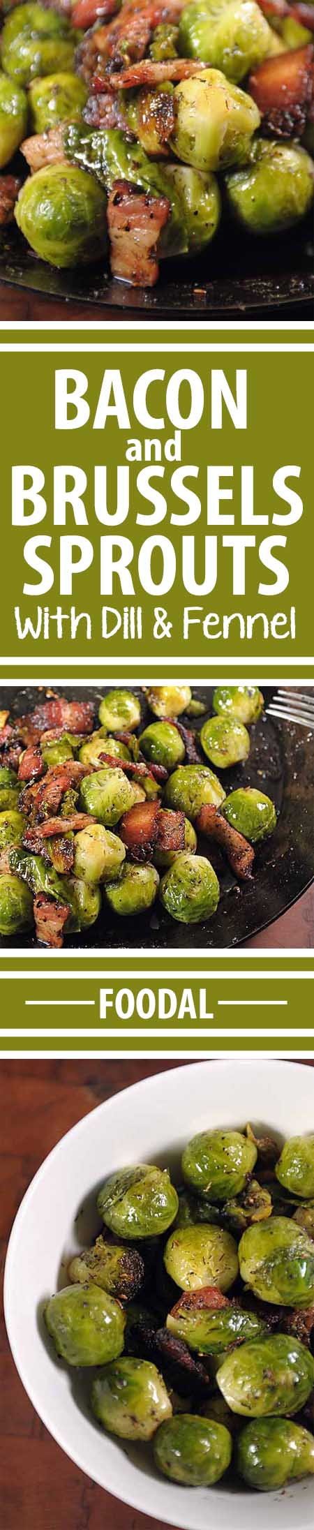 Have you always thought that Brussels sprouts were icky? If so, give this recipe a whirl. The added bacon gives it the flavor and texture that makes it very tasty. And the added fats helps your body absorb the nutrients packed into the sprouts. And that is what is called a win-win! Get the recipe here: https://foodal.com/recipes/veggies/organic-brussels-sprouts-sauteed-with-bacon/