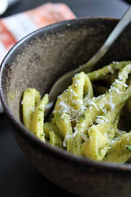 Looking for a new variation on the now ubiquitous pesto? If so, this homemade lemon basil pesto sauce may be just for you. Get the recipe now: https://foodal.com/recipes/sauces/lemon-basil-pesto/
