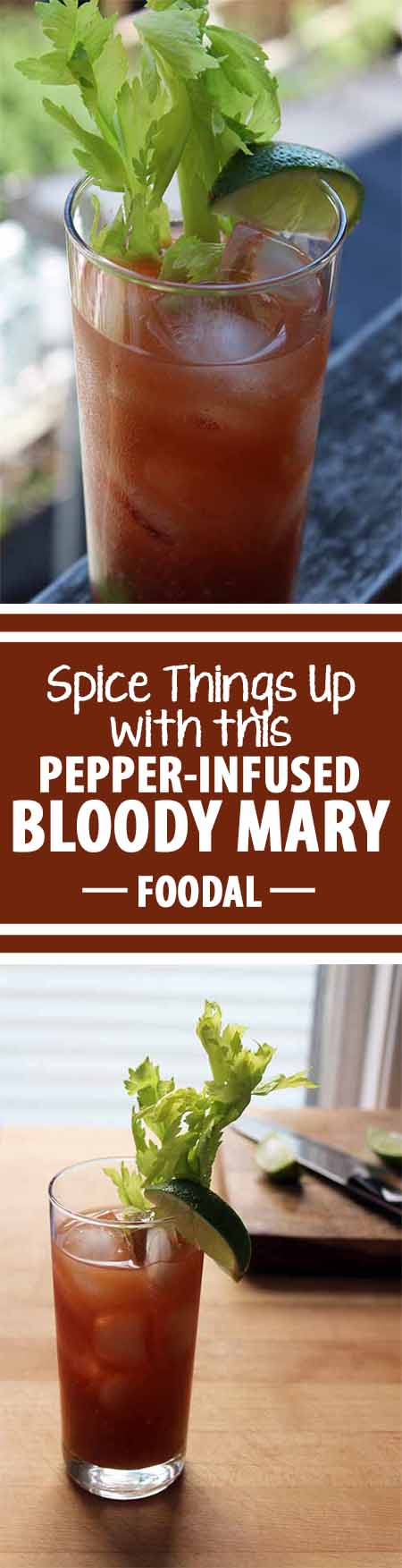 Forget everything you know about the Bloody Mary. Whether the infamous brunch drink is a go-to favorite or not, this recipe will blow your mind. Made with freshly pressed tomato and cucumber juice and spiked with a hot pepper-infused vodka, it is nothing like the thick red cocktail you've had before. Keep reading to find out more: http://foodal.com/drinks-2/alcoholic-beverages/pepper-infused-bloody-mary/