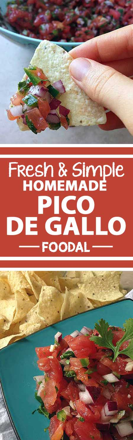 packs a zesty punch? Learn how to make your own homemade pico de gallo ...