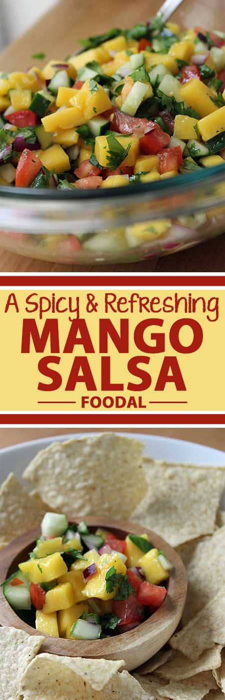 It's hot and it's cold. It's got a hint of spice while it's really refreshing at the same time. It may sound like an oxymoron, but this mango salsa recipe proves that this unique balance of flavor, temperature and texture is not only possible, but delicious. With additional ingredients as vibrant as jalapeno, purple onion, and cilantro, this recipe looks as good as it tastes. Give it a try today!
