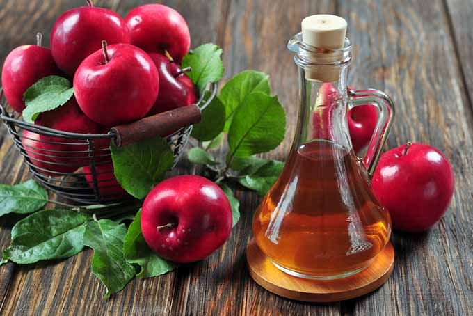 19 Add-Ins Apple Cider Vinegar | Foodal.com