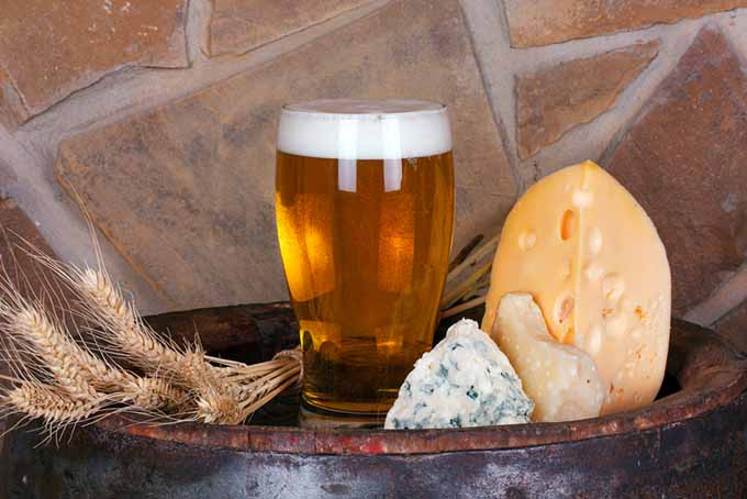 Beer and Cheeses | Foodal.com