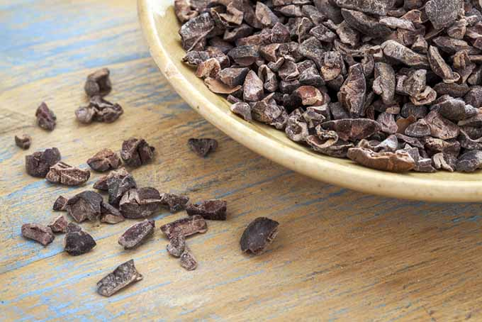 19 Add-Ins Cacao Nibs | Foodal.com