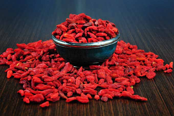 19 Add-Ins Dried Goji Berries | Foodal.com