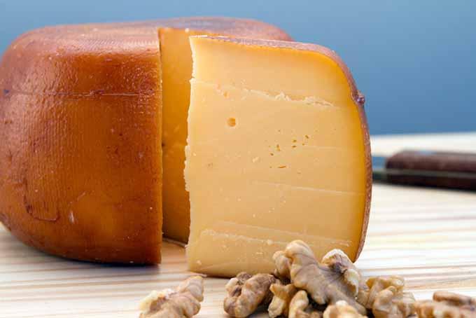 Gouda Cheese   Foodal.com