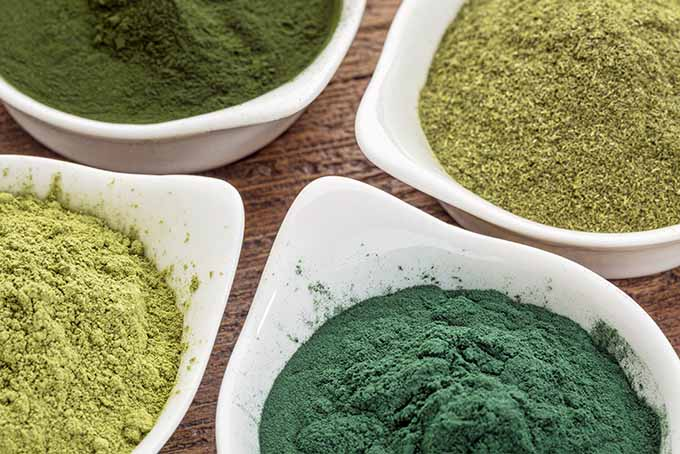 19 Add-Ins Green Smoothie Powders | Foodal.com