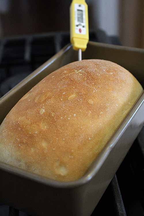The sandwich loaf. The locked braid. The twist. The knot. These are just a few of the shapes that you will learn to make at home, in our ultimate guide to bread shaping: https://foodal.com/knowledge/baking/shaping-bread/