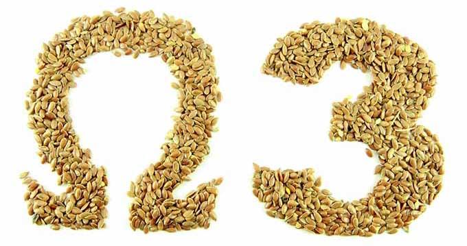 Add-Ins Omega 3 Seeds | familycuisine.net