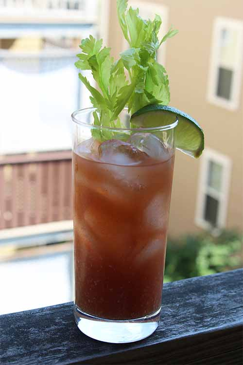 Skip the tobasco and make your next batch of Bloody Marys with home-infused hot pepper vodka instead. We've got the recipe: https://foodal.com/drinks-2/alcoholic-beverages/pepper-infused-bloody-mary/