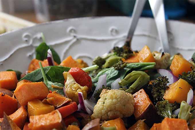Roasted Veggies   Foodal.com