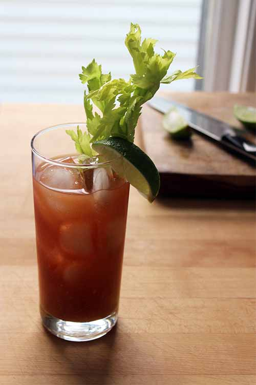 Sure, you can buy flavored vodkas at the store. But we think you'll prefer the flavor of your own homemade version, made with fresh chili peppers. Get the recipe on Foodal: http://foodal.com/drinks-2/alcoholic-beverages/pepper-infused-bloody-mary/