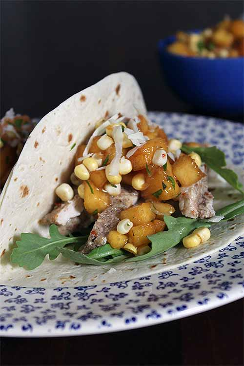 For a refreshing and fun meal that features summertime stone fruit and corn, make this recipe for pork tacos with homemade salsa: https://foodal.com/recipes/mexican-latin-america/pork-tacos-peach-corn-salsa/