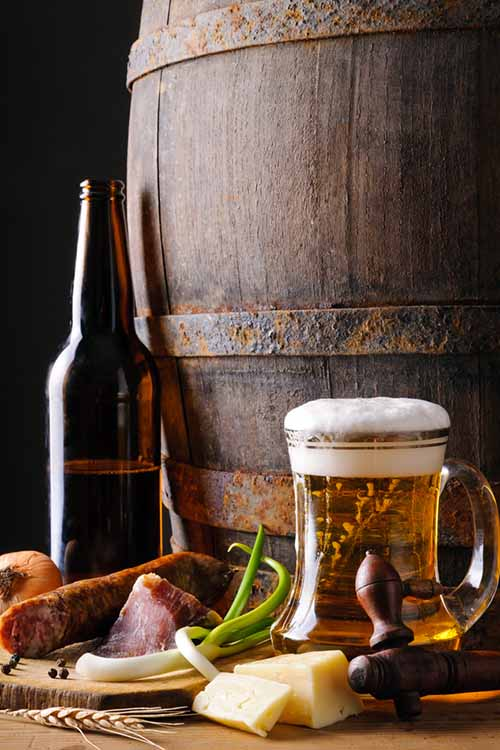 Excited for Oktoberfest? So are we here at Foodal! We've got all the info you need to build a cheese board to perfectly complement your favorite full-bodied, malt-forward lagers for the occasion: https://foodal.com/holidays/oktoberfest/beer-cheese-pairings/