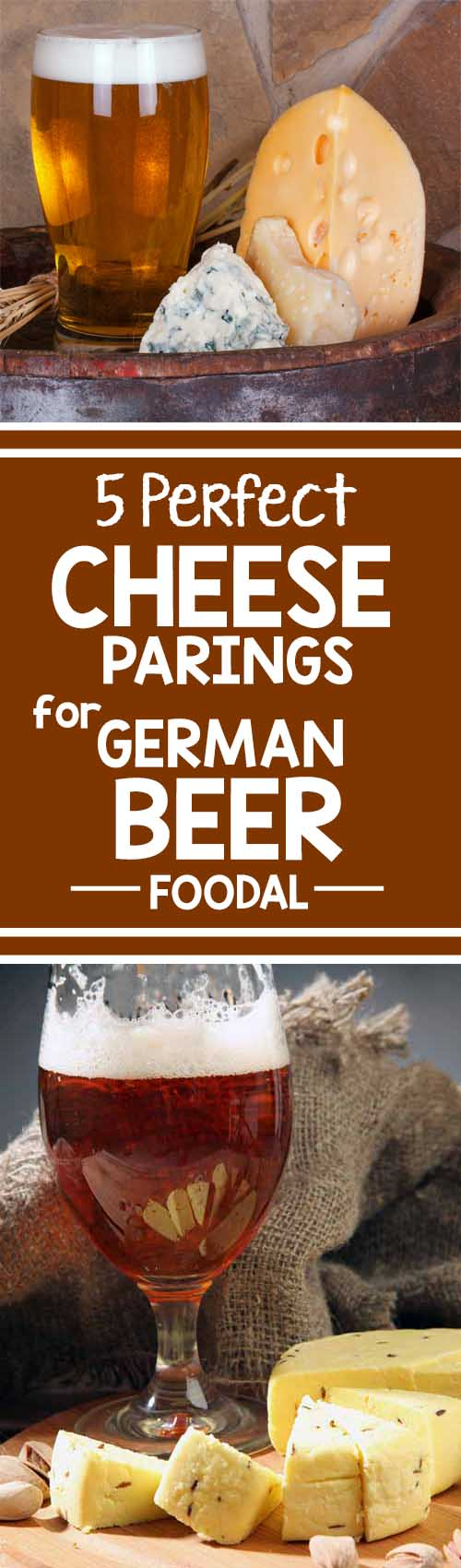 Excited for Oktoberfest? So are we! Foodal has all the info you need to build a cheese board to celebrate the harvest season and complement your favorite full-bodied, malt-forward lagers. Learn why cheese and beer make the perfect pair and the best spreads, breads, and honeys to serve with your pairings. https://foodal.com/holidays/oktoberfest/beer-cheese-pairings/ ‎