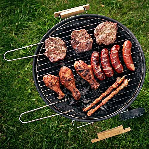 Barbecue Grill Reviews - Buying Guides on the Top Models ...