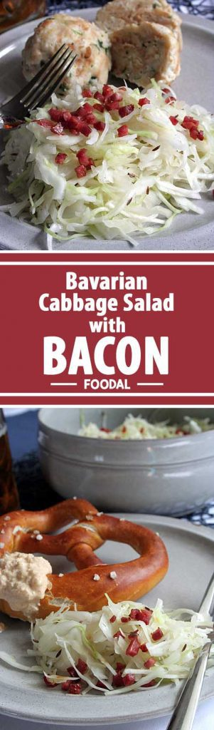 Try this delicious German version of coleslaw with a vinegar dressing. Topped with crispy bacon, it will soon become one of your favorites! Serve it for Oktoberfest or have it any time that you are hankering for a true Bavarian taste. https://foodal.com/recipes/german-recipes/cabbage-salad-bacon/