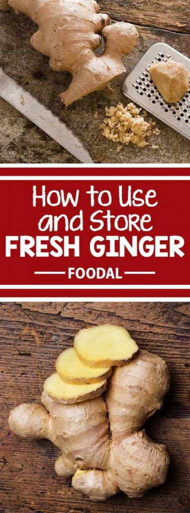 Looking for the best methods to shop, prep, and store fresh ginger? Read now on Foodal to learn how to handle these zesty hands! After reading our article, you will understand how to pick the best ginger at the store, as well as learn our favorite techniques for prepping and storing. Continue reading now on Foodal! https://foodal.com/knowledge/how-to/store-fresh-ginger/