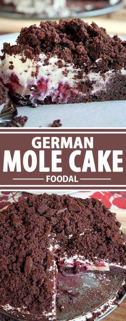 "This German Mole Cake will have you ""digging"" for more. Chocolate, vanilla whipped cream, and fresh fruit makes this the perfect treat when you need that special something. Get the recipe now on Foodal!"