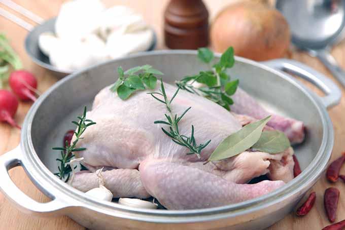 Raw Whole Chicken   Foodal.com