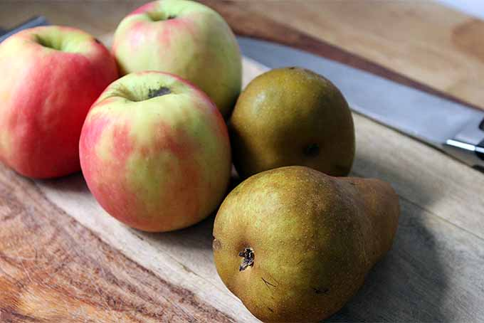 3 apples and 2 Barlett pears sitting on a rustic wooden surface. A chef's knife sits in the diffused background.