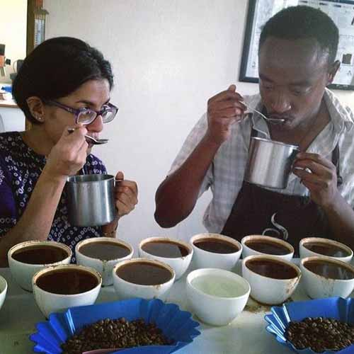 Coffee Tasting | Foodal.com