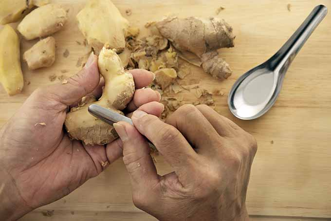 Peeling Ginger with a Spoon | Foodal.com