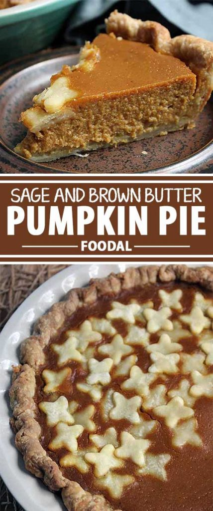 Everybody loves a good pumpkin pie, but sometimes it can be just a bit too plain on its own. Well, put away that ice cream and Cool Whip – you don't need them anymore! This recipe, flavored with sage and brown butter, just might by the very best pie you've ever tried. Read more on Foodal, and put it to the test today.