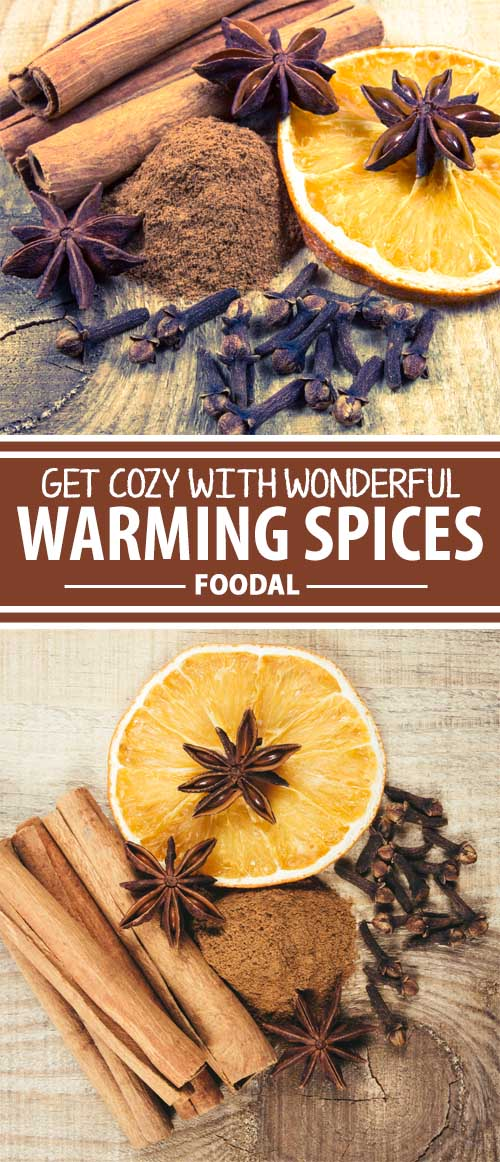 With the arrival of cooler weather, we instinctively turn to denser foods to provide more fuel, and heat, for our bodies. But we can turn up the heat even more with the addition of warming spices. Join us for a look at which spices provide the most warmth, and how to add more of them to your menu.