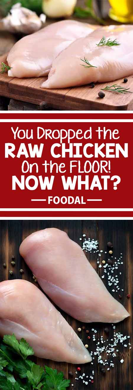 Oh, no! You just dropped raw chicken on the kitchen floor! But there's no need to panic. We have the easy solution to save your bird from this slippery situation. We'll also go over how to clean up the mess, and how to prevent it from happening again. Chicken is still on the menu for tonight's dinner! Read more now on Foodal.: https://foodal.com/knowledge/how-to/dropped-raw-chicken/