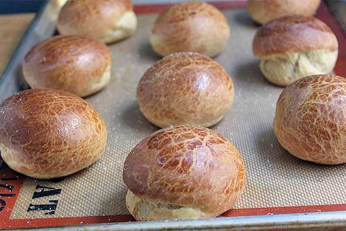 Baked Brioche Dinner Rolls | Foodal.com