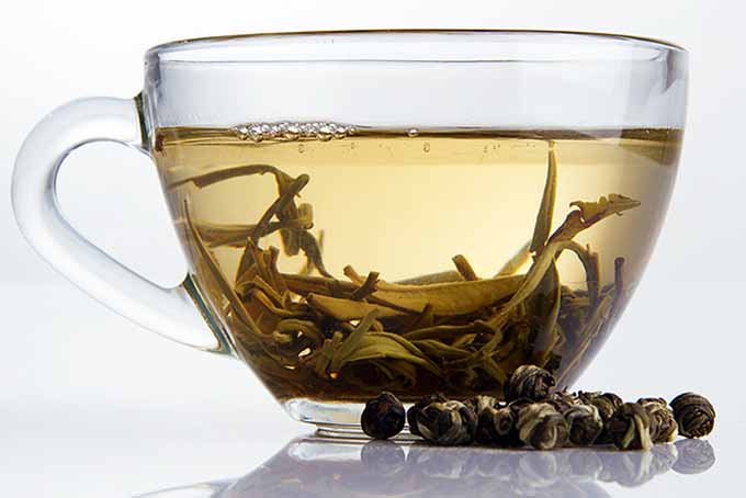 Brewing White Tea | Foodal.com