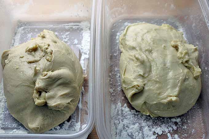 Brioche Roll Dough Resting | Foodal.com