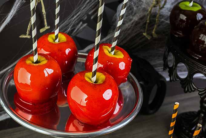 Halloween Candy Apples | Foodal.com