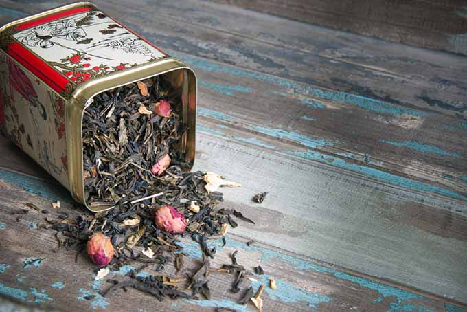 Spilled Tea Cannister | Foodal.com