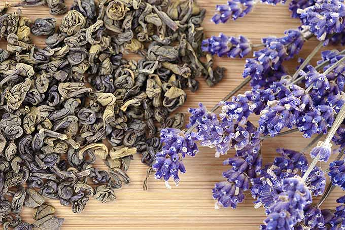 Fresh and Dried Lavender | Foodal.com