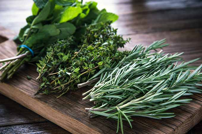 Fresh Herbs on Cutting Board | Foodal.com