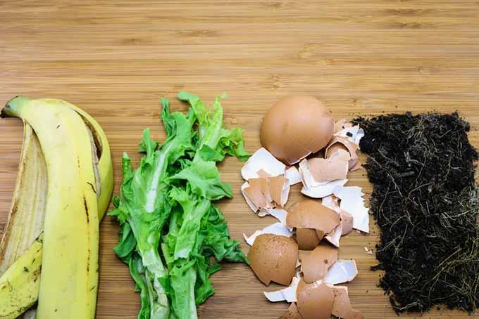 Kitchen Scraps for Fertilizer | Foodal.com