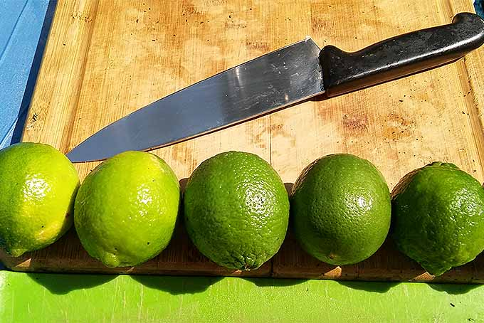 Limes for Nimbu Pani | Foodal.com