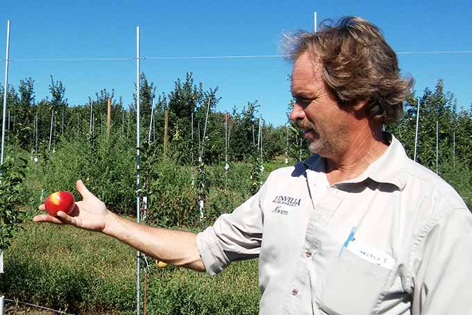 Farmer Norm Schultz with Honeycrisp Apple | Foodal.com