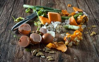 Reusing Kitchen Scraps Cover | Foodal.com