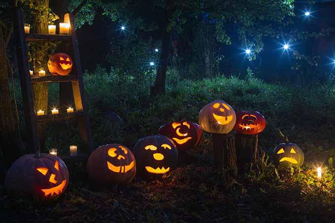 Spooky Halloween Jack-o-Lanterns | Foodal.com