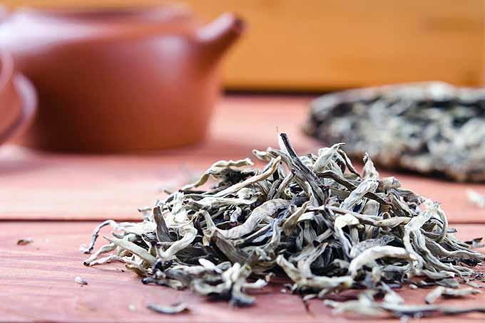 White Tea on Table | Foodal.com