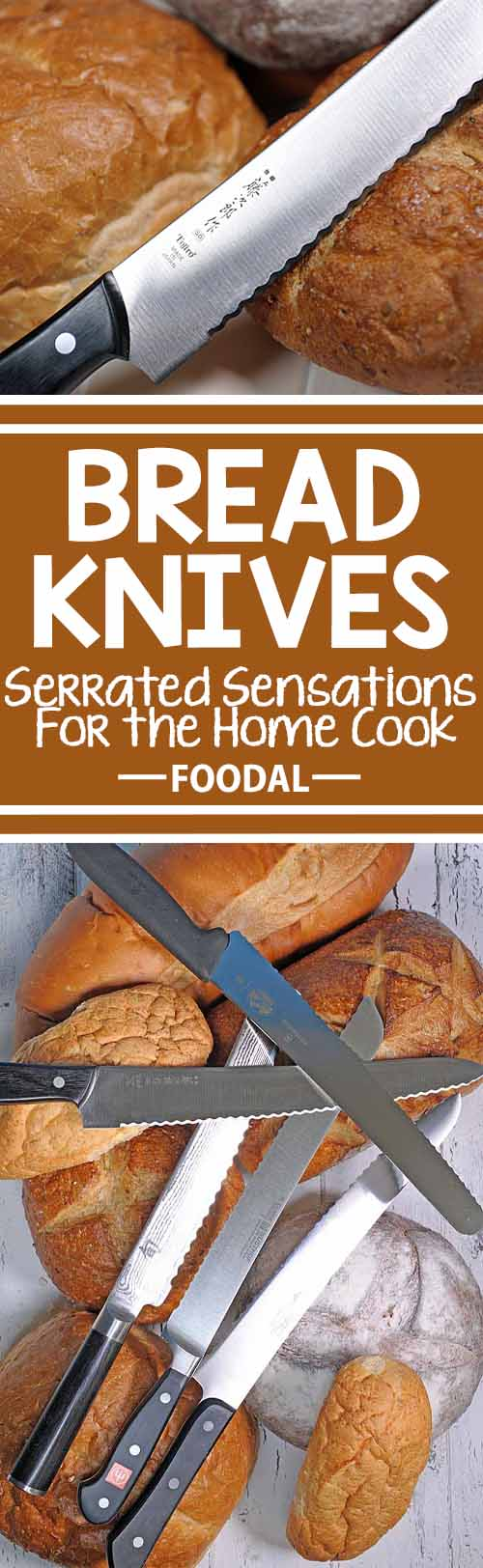 A good bread knife is a versatile blade that makes slicing loaves, tomatoes, and other foods a joyous exercise. But inferior ones create the opposite experience – mountains of crumbs, torn and ripped bread, or massive, uneven slices are all common results of blades with poor designs and cheap materials. Join us for a look at how these sawtooth sensations work, what types of serrations are best, how to sharpen them, and our recommendations for the models that give the best performance – and value! https://foodal.com/kitchen/knives-cutting-boards-kitchen-shears/things-that-cut/bread-knives-reviewed/