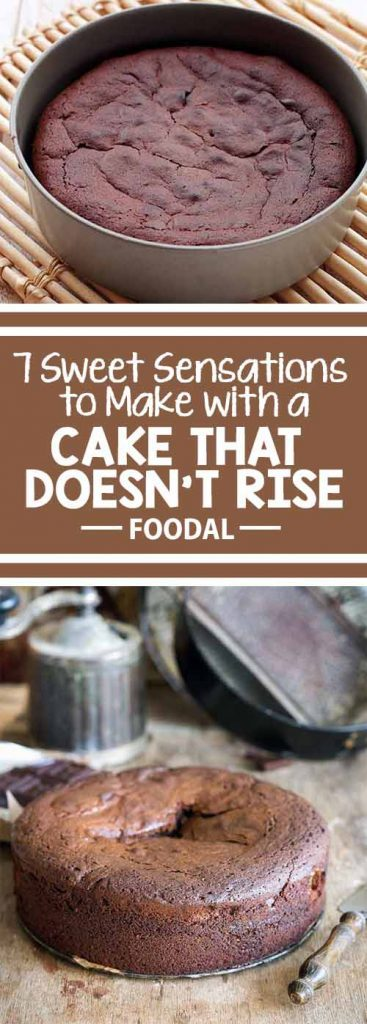 Have you baked a cake that didn't rise and now you're wondering what to do with it? Turn an imperfect cake into a delicious dessert with seven creative ideas from the experts at Foodal. With a little pudding, some chocolate, and maybe a shot or two, you'll have dessert back on track in no time.